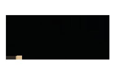 Liu-Meme Logo